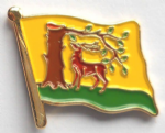 Berkshire Flag Enamel Pin Badge
